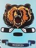 ХК Медведь