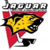 JaguarDnepro