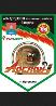 Arslan2008