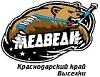 ХК Медведи