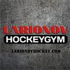 LarionovHockeyGym