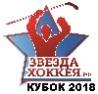 hockeystarcup
