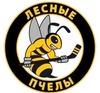 ХК Лесные Пчелы 2012